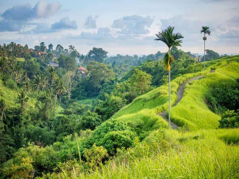Bali Barat