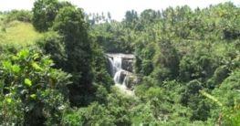 Geografie Bali (Lage, Flora, Fauna, Topografie, Klima)