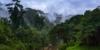Der Nationalpark Bali Barat